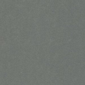 Grey velour